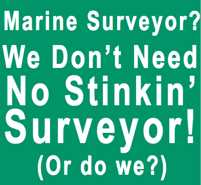 Marine Surveyor?