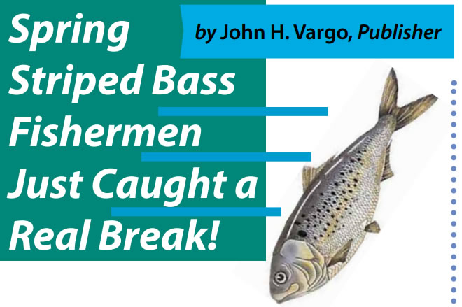 Spring Striped Bass Fishermen Just Caught a Real Break!