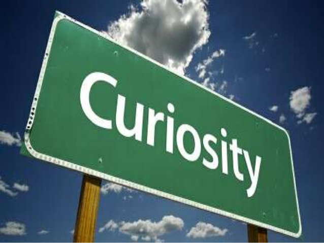 """Curiosity: """"The desire to learn or know about anything; Inquisitiveness."""""""